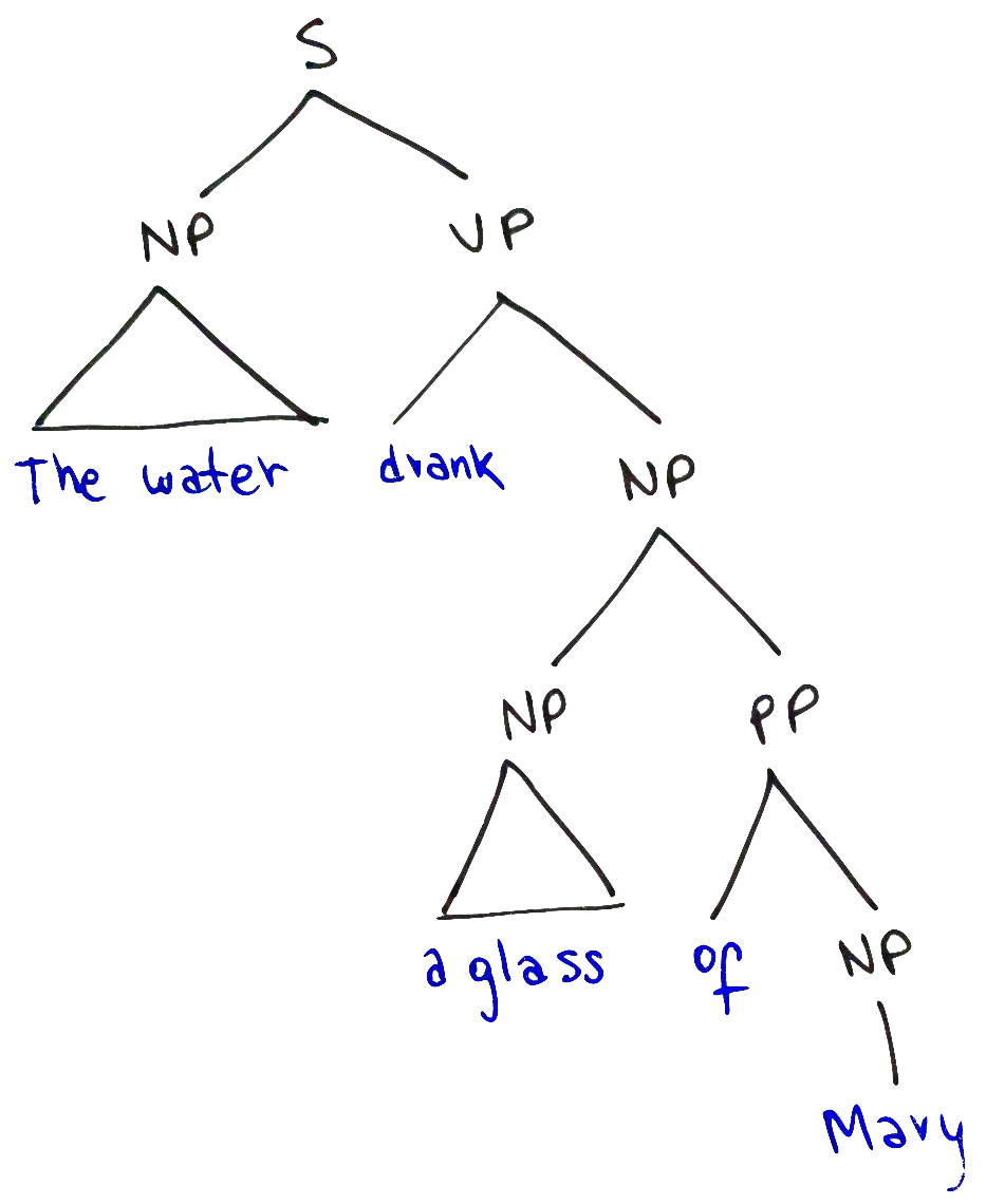 Concrete Syntax Tree of the sentence 'The water drank a glass of Mary.'